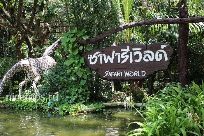 SafariWorld4