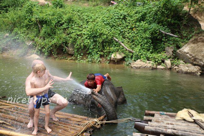 Тайцы развлекают нас