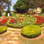 На территории Цветочного парка
