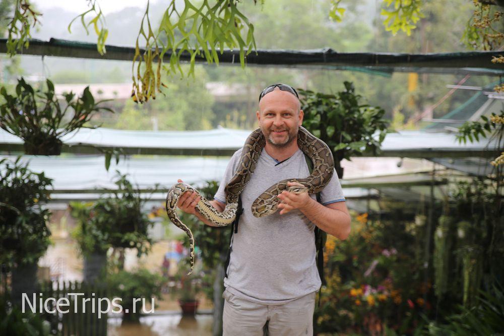 Фото со змеей