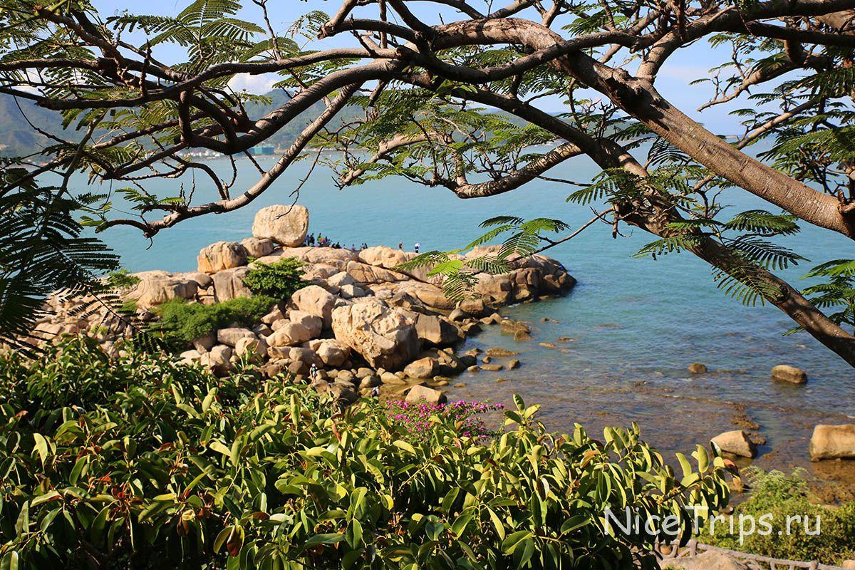 Сад камней в нячанге фото и отзывы семьи для