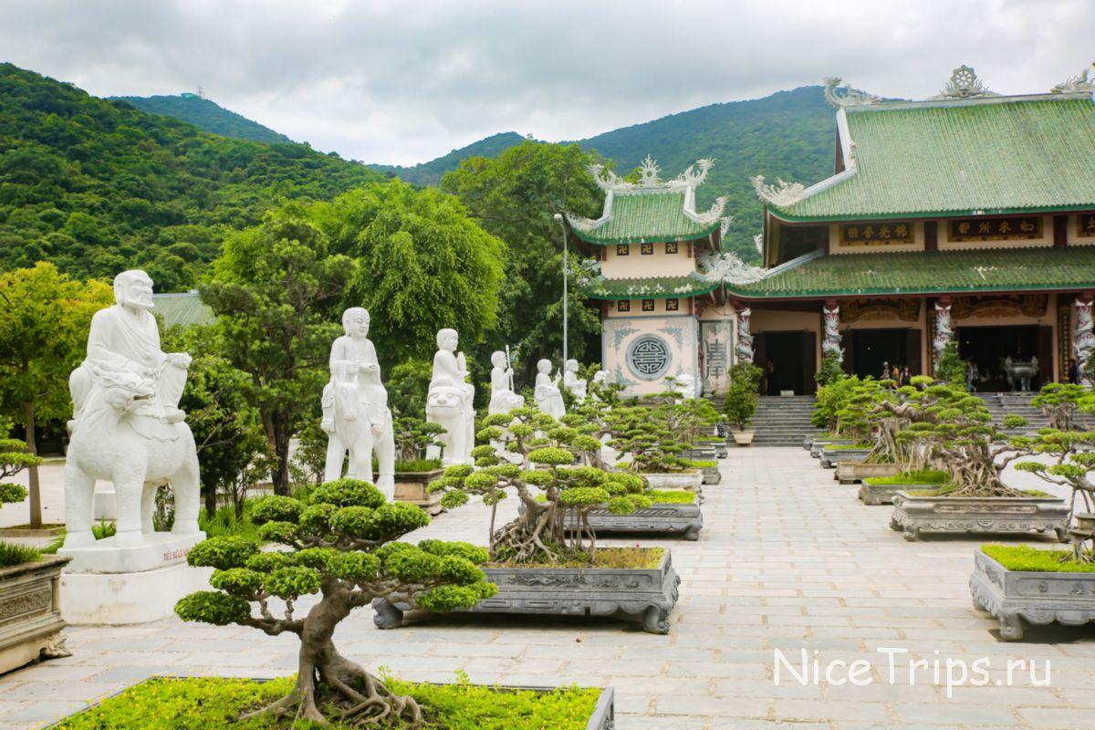 Деревья бонсай и статуи