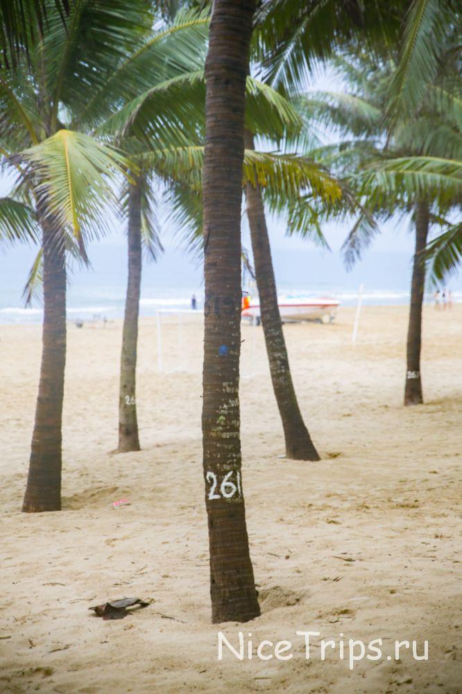 Пляж Ми Кхе в Дананге