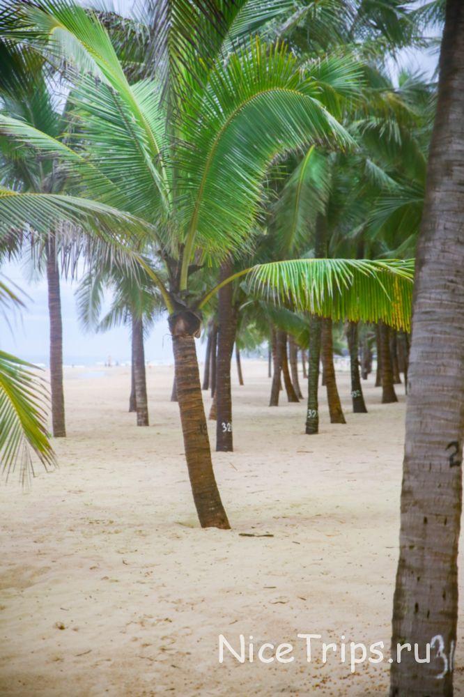 Центральный пляж в Дананге