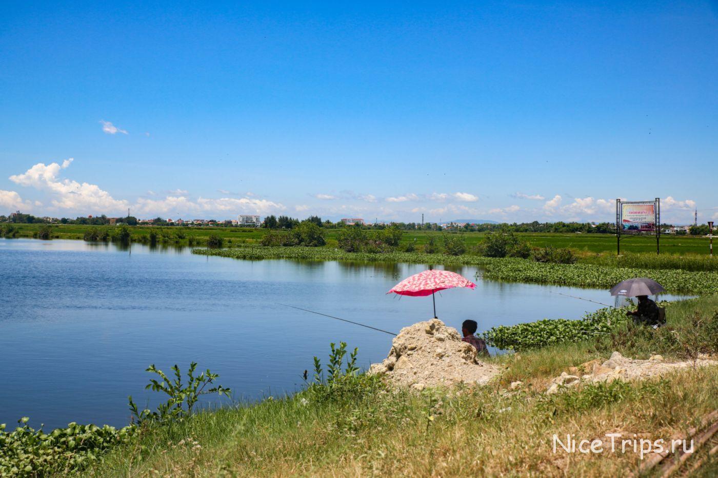 Озеро среди рисовых полей