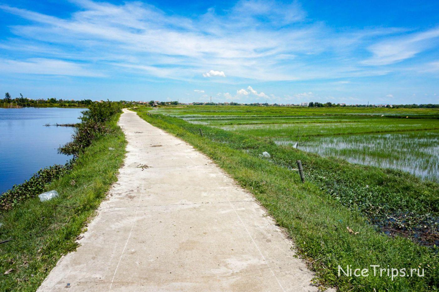 Вело прогулка по рисовым полям в Хойане