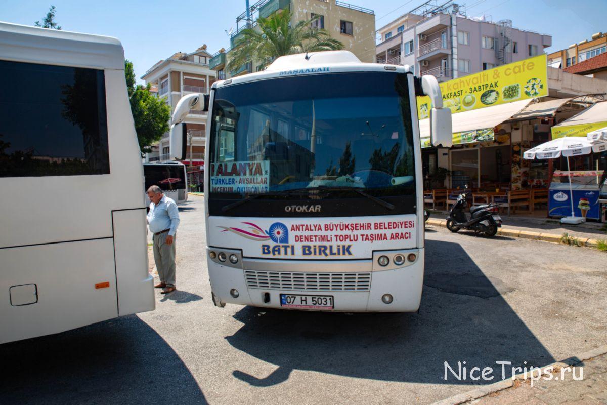 Автобус до Алании