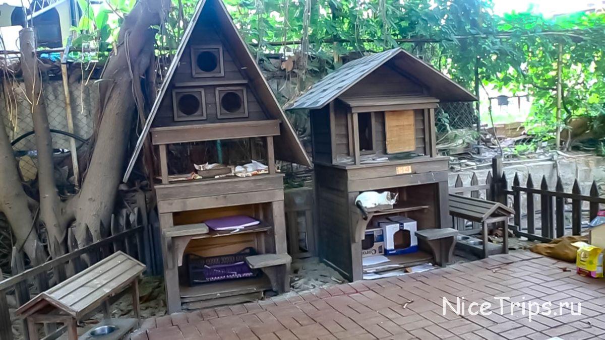 Кошачьи домики в парке Ататюрка