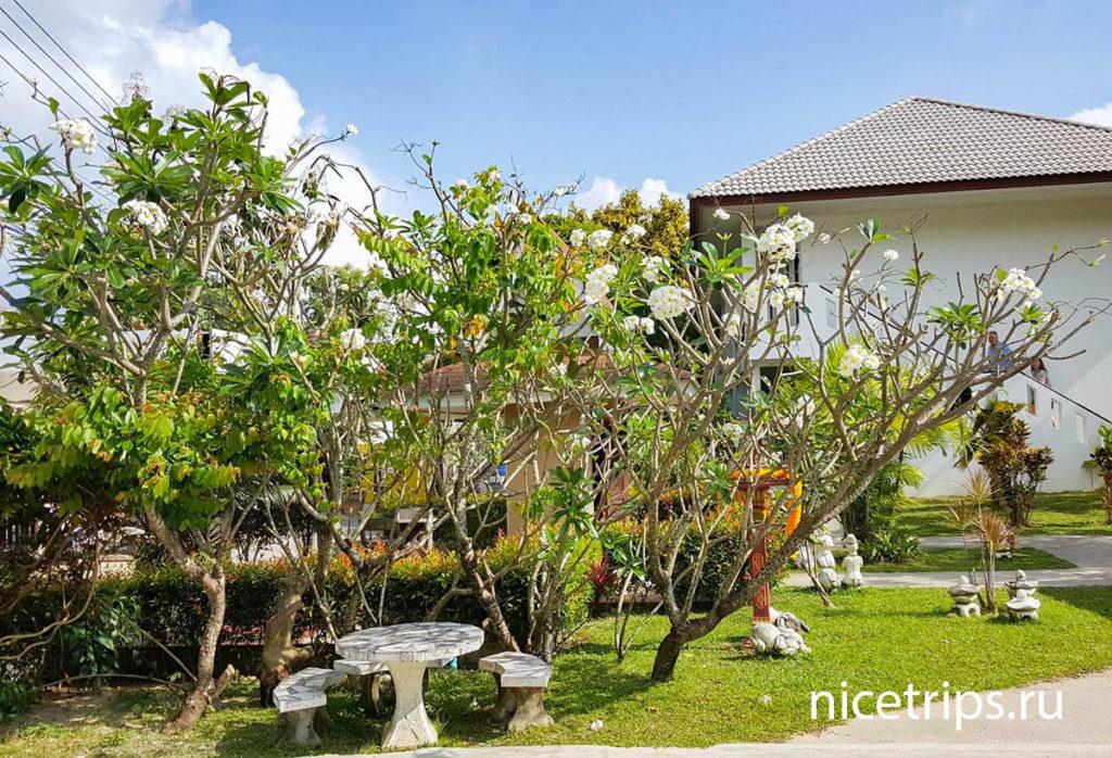 территория в отеле Florist Resort