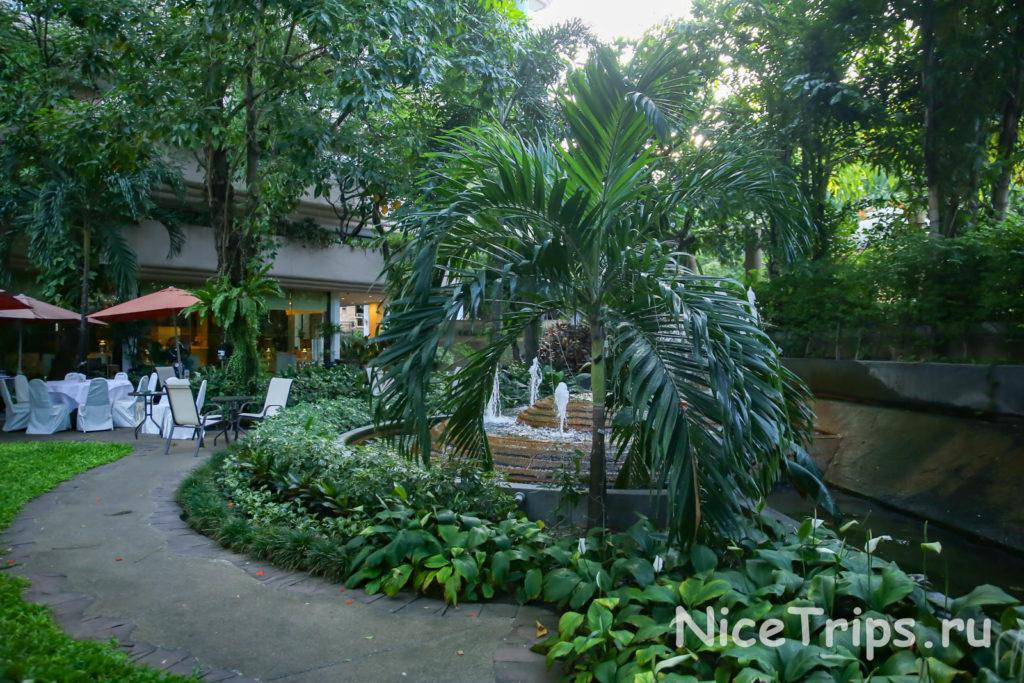 зеленый сад в отеле